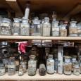 Blick in den Sammlungschrank mit Gläsern der Deutschen Tiefsee-Expedition