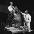 Karl Kaestner und Gerhard Schroeder bei der Arbeit an der Dermoplastik des Gorillas Bobby