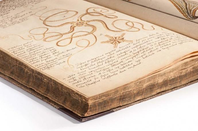 De stellis marinis liber singularis von Johann Heinrich Linck, Leipzig 1733; mit zahlreichen handschriftlichen Notizen und Skizzen