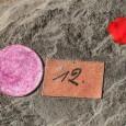 Der rote Punkt auf den Objekt markiert das Typusexemplar, d.h. an diesem Stück wurde die erstmalige Artbeschreibung durchgeführt.