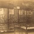 Das aufgestellte Tritonshorn befindet sich in der äußeren linken Vitrine, mittig auf dem obersten Regalboden. Die Vitrine war Teil der Ausstellung ab 1889 unter Möbius und befand sich im Saal für wirbellose Tiere.