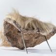 Ein solches kleines Stück Fell löste eine wilde Jagd nach einem lebendigen Riesenfaultier aus.