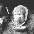 Präparator Kästner bei der Arbeit an der Dermoplastik des Gorillas Bobby