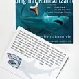 Fossiler Haizahn aus der Museumspädagogik.