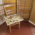 Das kleine Nest der Töpferwespe ist Teil einer Sammlung von Wespennestern, die in diesem Schrank aufbewahrt wird.