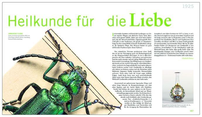 150730_Wissensdinge_Final_druck.indd
